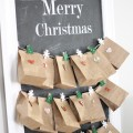 DIY Advent Calendar - The 2 Seasons