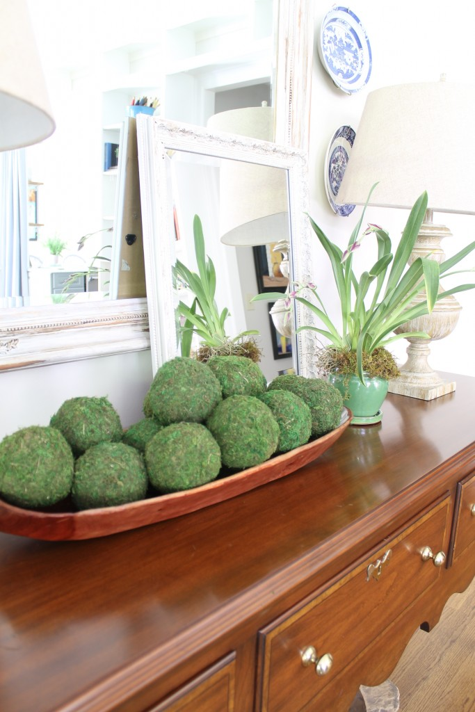 Moss balls in great room - The 2 Seasons