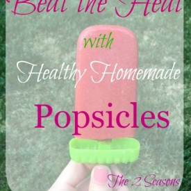 Healthy Homemade Popsicles - The 2 Seasons