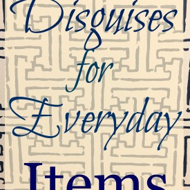 Disguises for Everyday Items - The 2 Seasons