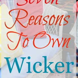 Seven Reasons to Own Wicker - The 2 Seasons