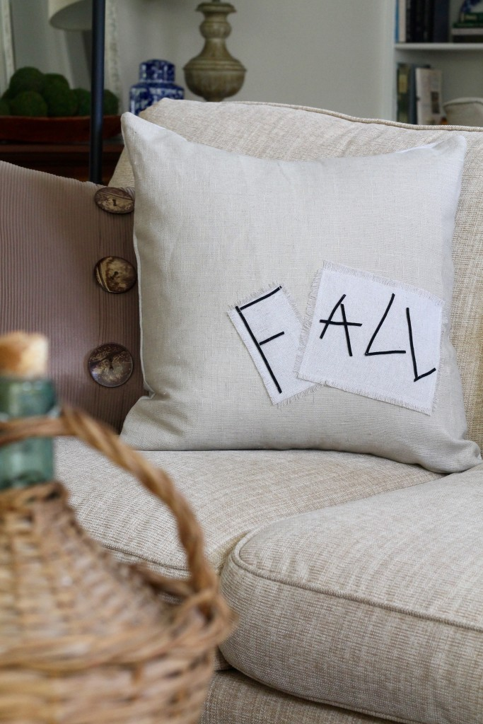 Quick and Easy DIY Fall Pillow - the 2 Seasons