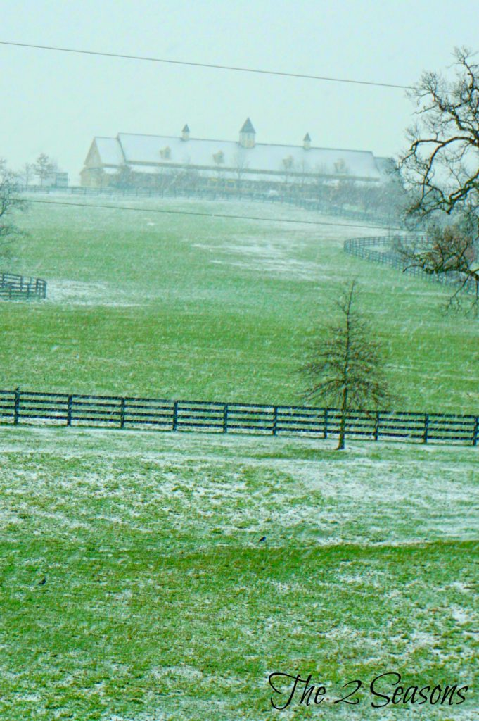 Horse farm - The 2 Seasons