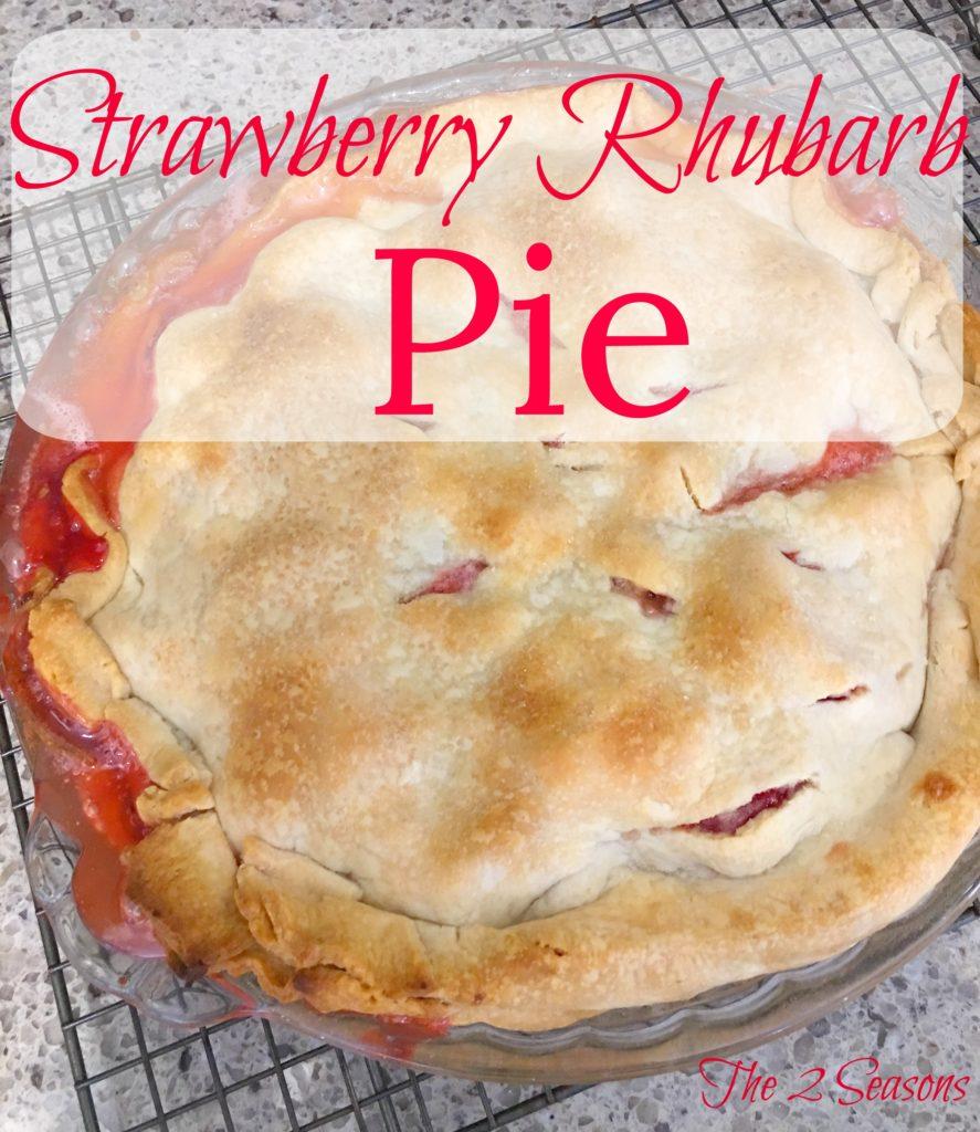 Strawberry Rhubarb Pie - The 2 Seasons