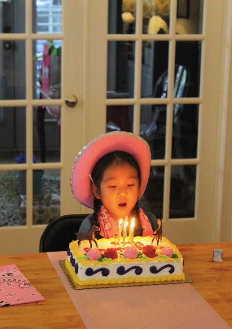 Birthday Cake - Little Miss Turns 4