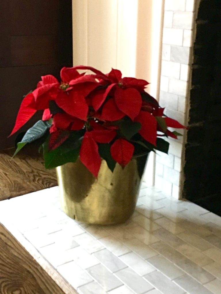 IMG 3118 768x1024 - Janette's Christmas Mantel