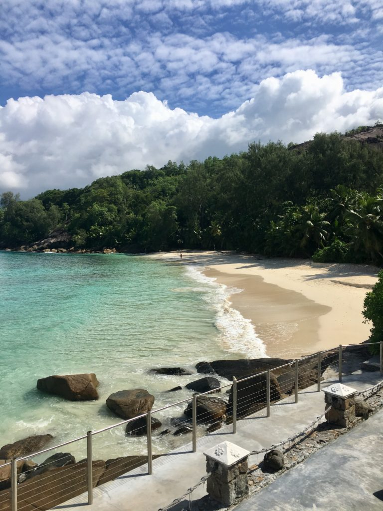 IMG 3144 768x1024 - Our Trip to the Seychelles
