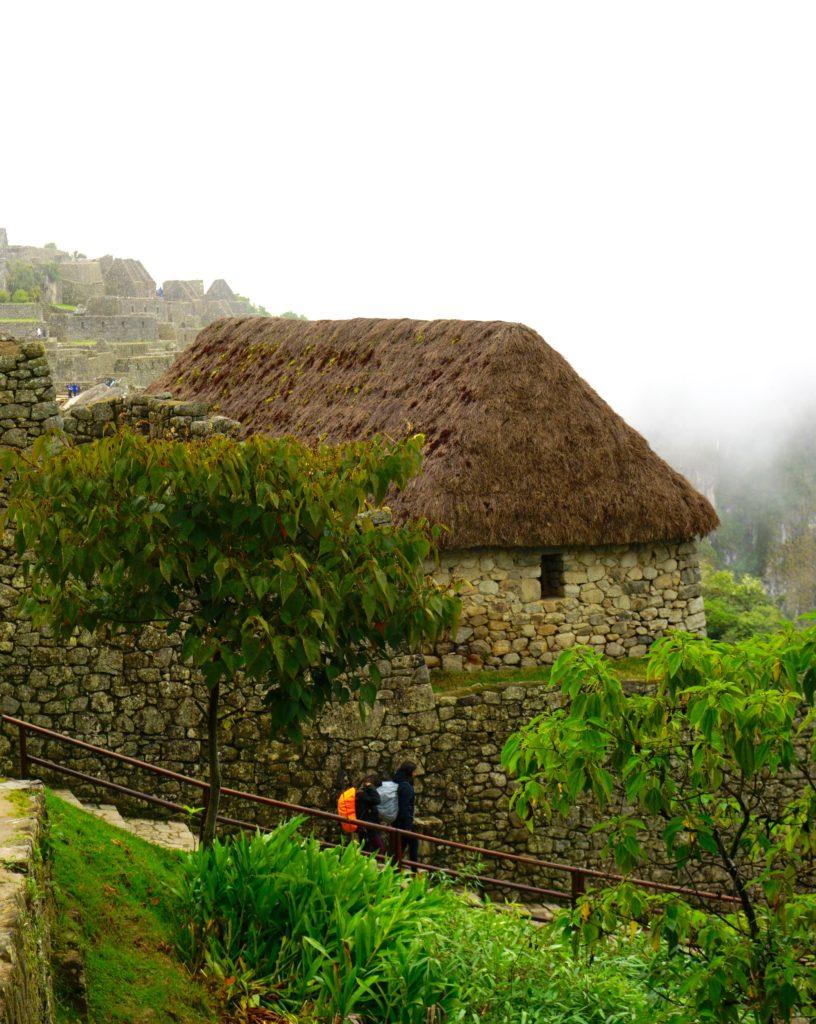 DSC01920 816x1024 - Our Trip to Machu Picchu