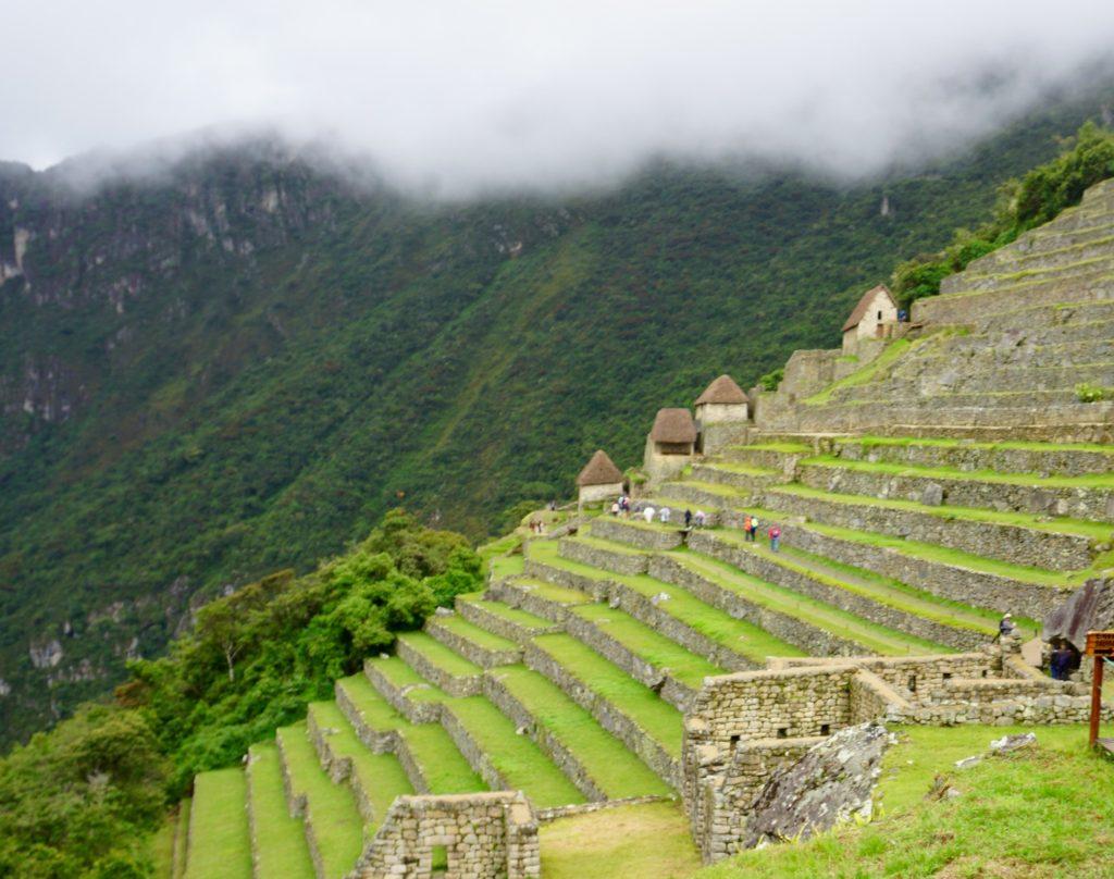 DSC01941 1024x808 - Our Trip to Machu Picchu