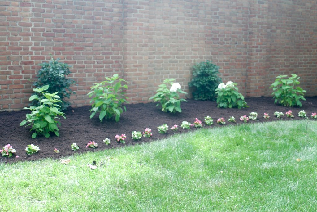 IMG 5681 1024x683 - The Landscaping is Finished