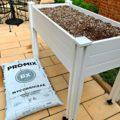 Garden bed in courtyard 1 120x120 - Garden Update